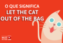 o que significa let the car out of the bag